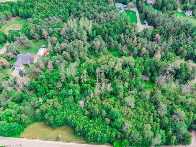 9085 River Road W, Adjala-Tosorontio, ON L0N 1P0 (MLS #40013246) :: Forest Hill Real Estate Collingwood