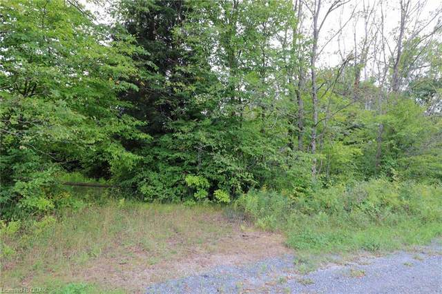 N/A Robinson Road, Tweed, ON K0K 3J0 (MLS #40013665) :: Forest Hill Real Estate Collingwood
