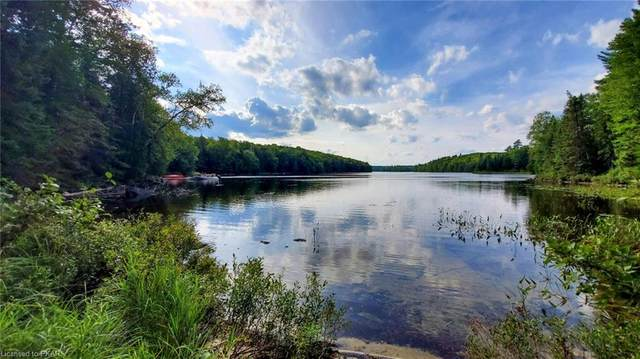 N/A Chelmford Road, Bancroft, ON K0L 1C0 (MLS #40015101) :: Forest Hill Real Estate Collingwood