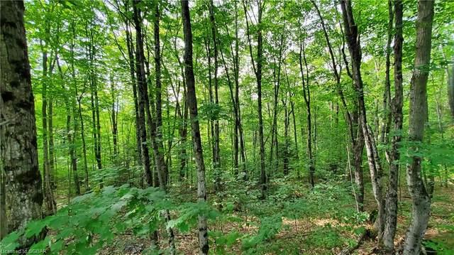 LT 1 Muskoka Pines Road, Bracebridge, ON P1L 0A1 (MLS #40015915) :: Forest Hill Real Estate Collingwood