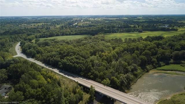 47 Cockshutt Road, Brantford, ON N3T 5L6 (MLS #40016331) :: Forest Hill Real Estate Collingwood