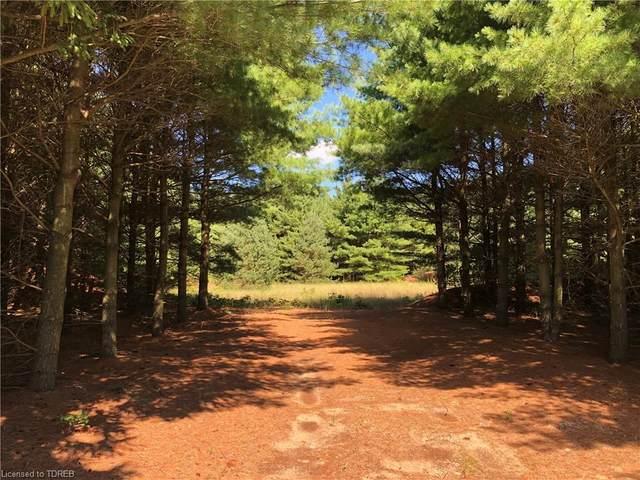 1531 Norfolk County Road 45 Road, Langton, ON N0E 1G0 (MLS #40016954) :: Forest Hill Real Estate Collingwood