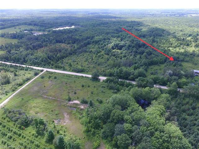 429530 8TH B Concession, Grey Highlands, ON N0C 1M0 (MLS #40019170) :: Forest Hill Real Estate Collingwood