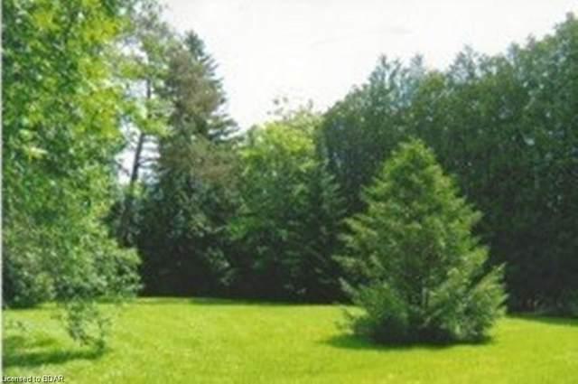 104 Lakeshore Road W, Oro-Medonte, ON L0L 2E0 (MLS #40026311) :: Forest Hill Real Estate Collingwood
