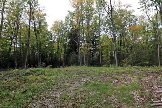 1303 Whites Road, North Frontenac, ON K0H 1B0 (MLS #40026390) :: Forest Hill Real Estate Collingwood