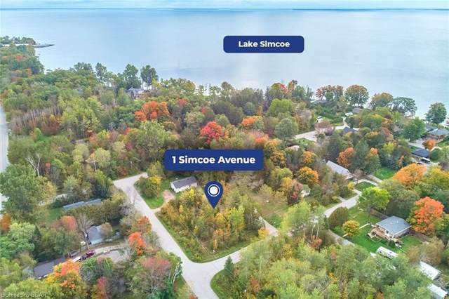 1 Simcoe Avenue, Oro-Medonte, ON L0L 2E0 (MLS #40027834) :: Forest Hill Real Estate Collingwood