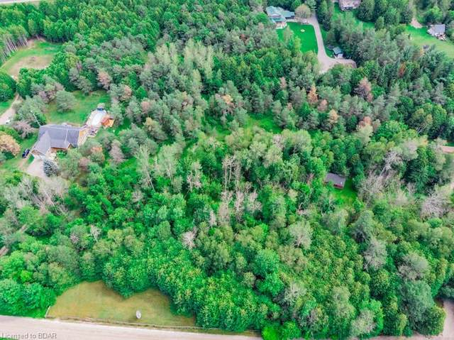 9085 River Road W, Adjala-Tosorontio, ON L0N 1P0 (MLS #40047714) :: Sutton Group Envelope Real Estate Brokerage Inc.