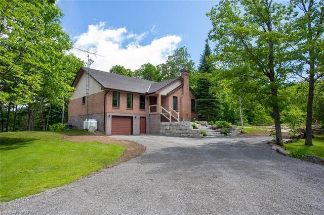 2331 Lakeside Road, Lakefield, ON K0L 2H0 (MLS #40053682) :: Forest Hill Real Estate Collingwood