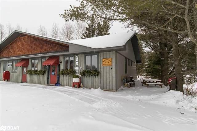 60 Ontario Street, Burk's Falls, ON P0A 1C0 (MLS #40063328) :: Forest Hill Real Estate Inc Brokerage Barrie Innisfil Orillia