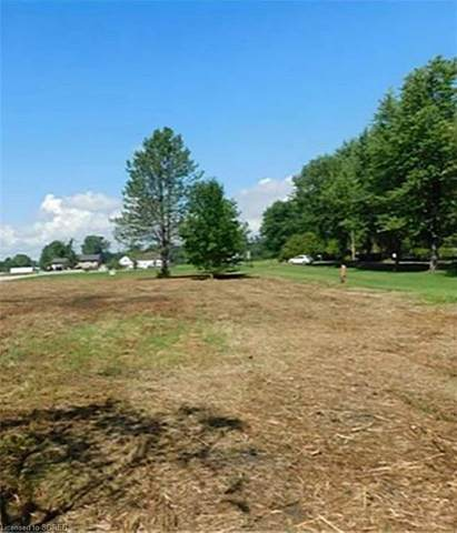 LOT 12 Booth Harbour Road, St. Williams, ON N0E 1P0 (MLS #40066523) :: Forest Hill Real Estate Inc Brokerage Barrie Innisfil Orillia