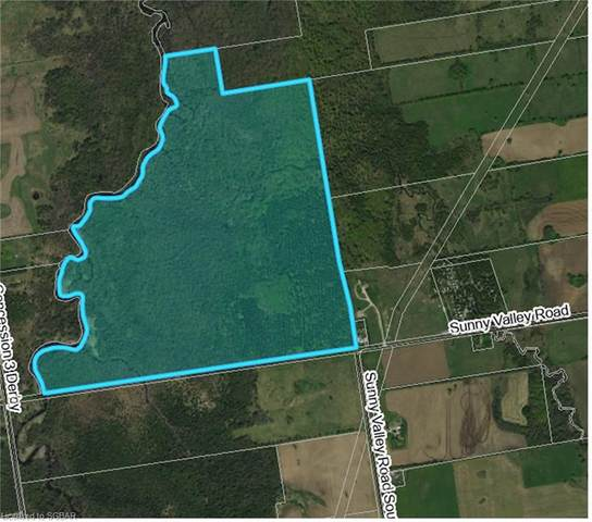 062653 Sunny Valley Road, Georgian Bluffs, ON N4K 5N6 (MLS #40075572) :: Forest Hill Real Estate Collingwood