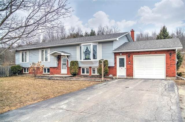 7700 9 COUNTY Road, Creemore, ON L0M 1N0 (MLS #40078508) :: Forest Hill Real Estate Collingwood