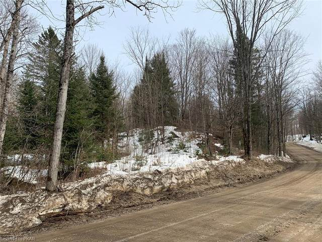 0 Old Hastings Road, Coe Hill, ON K0L 1C0 (MLS #40085750) :: Forest Hill Real Estate Collingwood