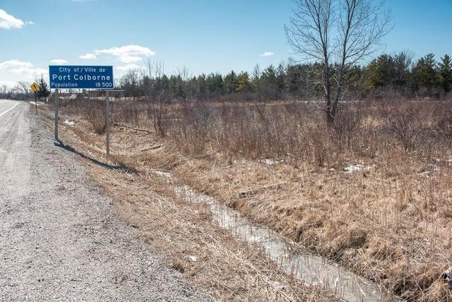 N/A Hwy 58 Highway, Welland, ON L3K 5V5 (MLS #40094204) :: Envelope Real Estate Brokerage Inc.