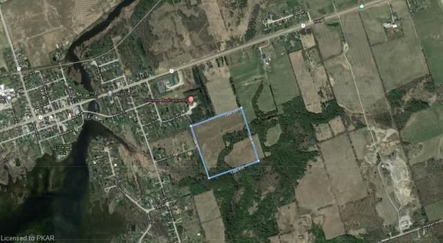 . Distillery Street, Omemee, ON K0L 2W0 (MLS #40109367) :: Envelope Real Estate Brokerage Inc.