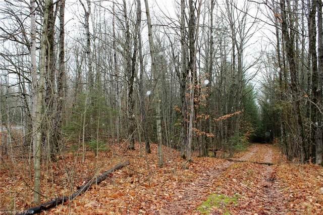 0 Elim Lodge Road, Trent Lakes, ON K0L 1J0 (MLS #40115052) :: Forest Hill Real Estate Collingwood