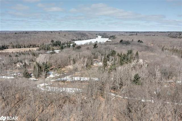 63 North Sandy Plains Road, Seguin, ON P2A 2W8 (MLS #40116720) :: Forest Hill Real Estate Collingwood