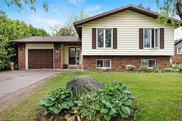 34 Francis Street E, Creemore, ON L0M 1G0 (MLS #40117633) :: Forest Hill Real Estate Collingwood