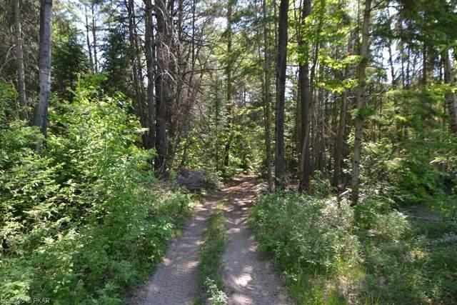 PT LOT 20 CON 16 Highway 62 North/Soble Road, Monteagle, ON K0L 2S0 (MLS #40123311) :: Forest Hill Real Estate Collingwood