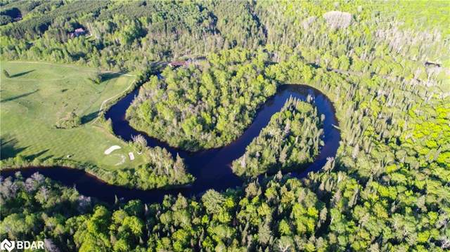 LOT 12 11 Highway, Katrine, ON P0A 1C0 (MLS #40123345) :: Forest Hill Real Estate Collingwood