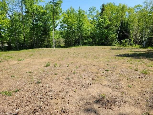 12491 Highway 41, Addington Highlands, ON K0H 2G0 (MLS #40124250) :: Forest Hill Real Estate Collingwood