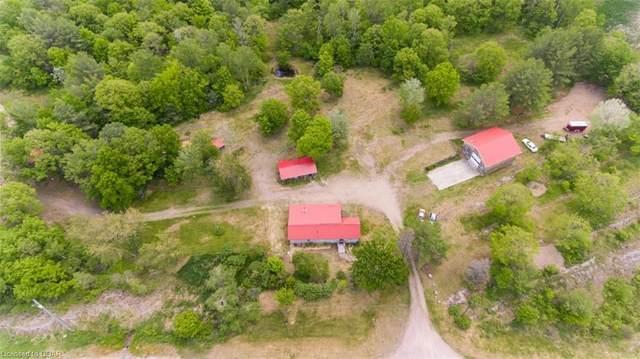 113456 Highway 7, Kaladar, ON K0H 1Z0 (MLS #40124326) :: Forest Hill Real Estate Collingwood