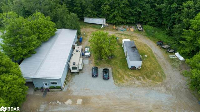 779 Balm Beach Road E, Midland, ON L9M 1R2 (MLS #40124571) :: Forest Hill Real Estate Collingwood