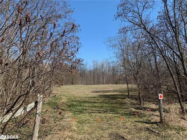 1001 Line 4 S, Oro-Medonte, ON L0L 2L0 (MLS #40127978) :: Forest Hill Real Estate Inc Brokerage Barrie Innisfil Orillia