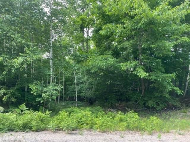 N/A Reid Road, Bancroft, ON K0L 1C0 (MLS #40131890) :: Forest Hill Real Estate Collingwood