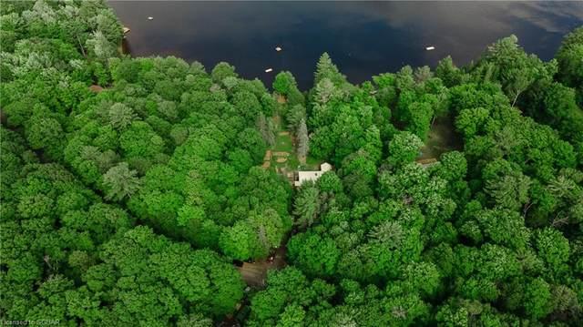 335 Otter Lake Road, Huntsville, ON P1H 2J3 (MLS #40132208) :: Forest Hill Real Estate Collingwood