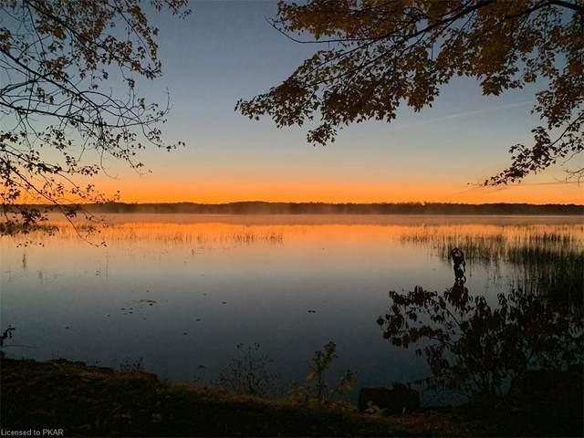 68 Knotts Landing Road, Curve Lake, ON K0L 1R0 (MLS #40138099) :: Forest Hill Real Estate Collingwood