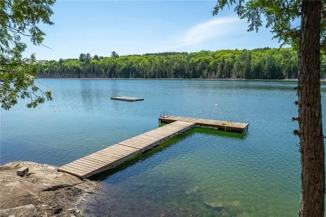 3764 Weslemkoon Lake Road, Gilmour, ON K0L 1W0 (MLS #40138265) :: Forest Hill Real Estate Collingwood