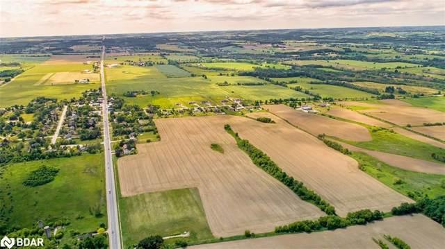 9138 Highway 89 Highway, Rosemont, ON L0N 1R0 (MLS #40140513) :: Forest Hill Real Estate Collingwood