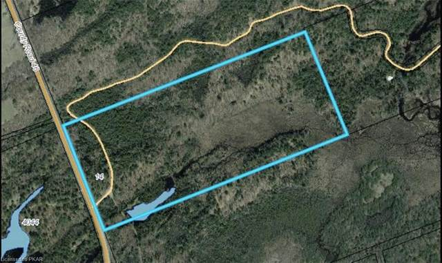 14 Devils 4 Mile Road, Havelock, ON K0L 1Z0 (MLS #40141053) :: Forest Hill Real Estate Collingwood