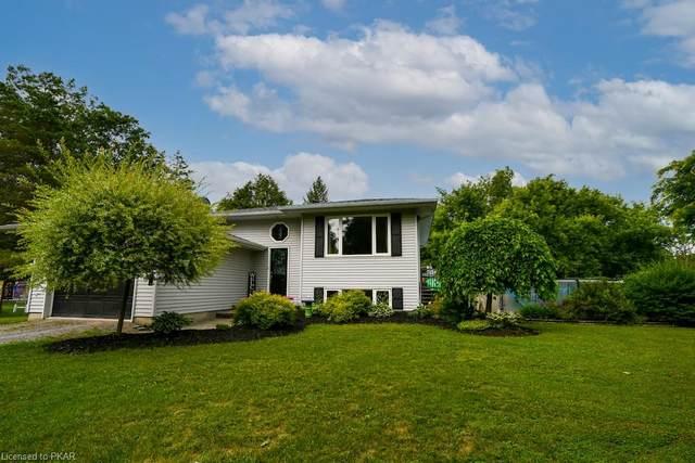 3259 Lakefield Road, Selwyn, ON K9J 6X5 (MLS #40141472) :: Forest Hill Real Estate Collingwood