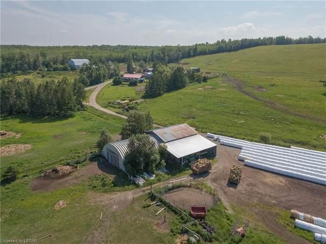 098412 Jelly Road N, New Liskeard, ON P0J 1P0 (MLS #40141624) :: Forest Hill Real Estate Collingwood