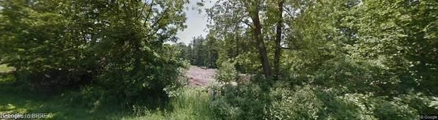 272B German School Road, Paris, ON N3L 3E1 (MLS #40142327) :: Forest Hill Real Estate Collingwood