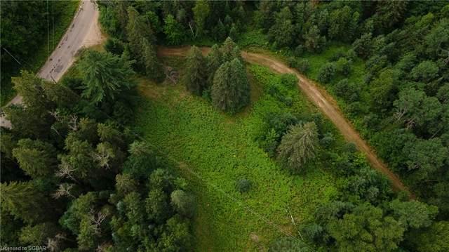 LT 24 Deer Lake Road N Pt 1,2,3, Emsdale, ON P1H 1R1 (MLS #40143392) :: Forest Hill Real Estate Collingwood