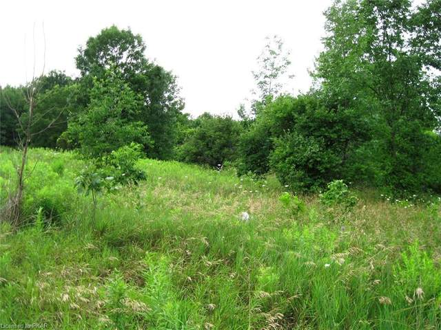 00 North Indian Rd Road, Asphodel-Norwood Twp, ON K0L 1Y0 (MLS #40143574) :: Forest Hill Real Estate Collingwood