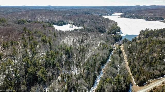 PT LOT 2 Sucker Lake Trail, Highlands East, ON K0L 3C0 (MLS #40143855) :: Forest Hill Real Estate Collingwood