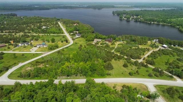 LT 1 Lakeview Drive, Trent Hills, ON K0K 1L0 (MLS #40144917) :: Forest Hill Real Estate Collingwood