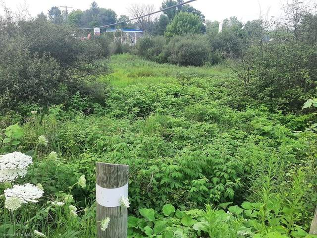 3980 Muskoka Rd 169, Port Carling, ON P0B 1J0 (MLS #40145084) :: Forest Hill Real Estate Collingwood