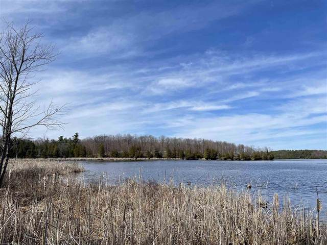 0 Mosquito Lake Road, Westport, ON K0G 1X0 (MLS #40146295) :: Forest Hill Real Estate Collingwood
