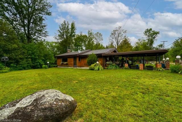 3400 Juniper Point Road, Lakefield, ON K0L 2H0 (MLS #40147393) :: Forest Hill Real Estate Collingwood