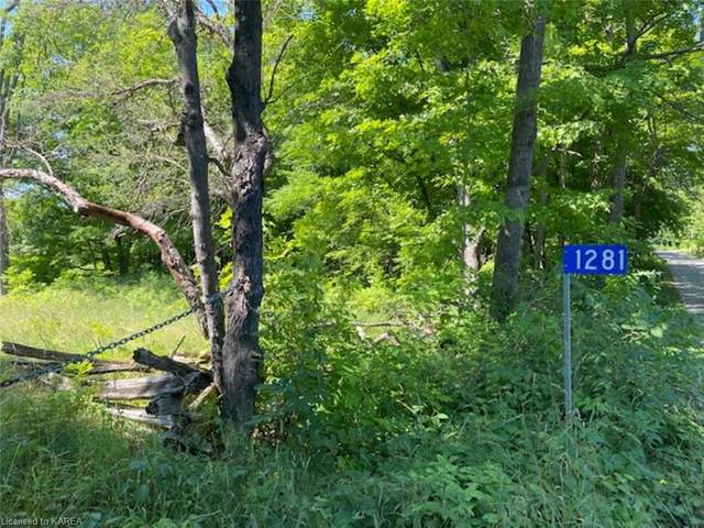 1281 Tryon Road, Sharbot Lake, ON K0H 2P0 (MLS #40147891) :: Forest Hill Real Estate Collingwood