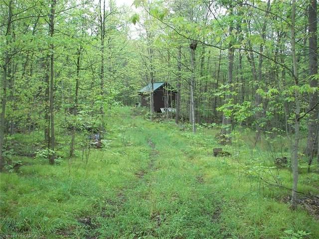 0 Hitchinbrooke Road, Hartington, ON K0H 1W0 (MLS #40148310) :: Forest Hill Real Estate Collingwood