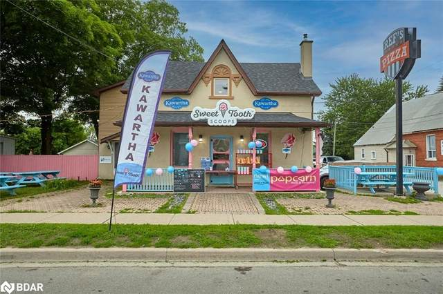 244 Barrie Street, Thornton, ON L0L 2N0 (MLS #40148835) :: Forest Hill Real Estate Collingwood