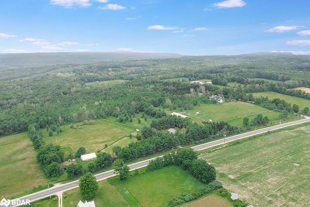 4335 Vasey Road, Oro-Medonte, ON L0K 2A0 (MLS #40157003) :: Envelope Real Estate Brokerage Inc.