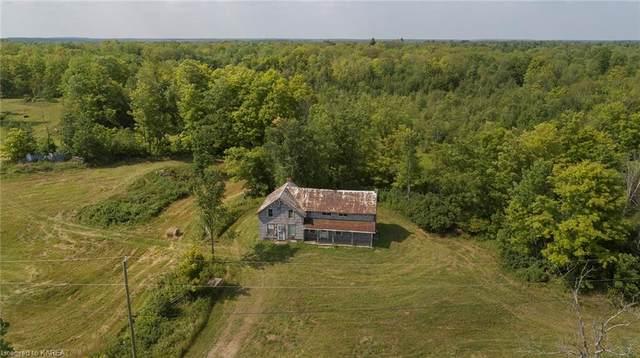 1260 Tryon Road, Sharbot Lake, ON K0H 2P0 (MLS #40170917) :: Envelope Real Estate Brokerage Inc.