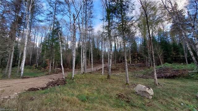 LT 2 518 Highway, Kearney, ON P0A 1M0 (MLS #40178240) :: Forest Hill Real Estate Collingwood
